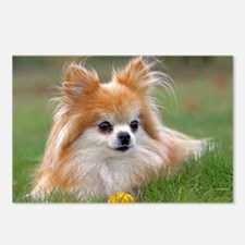 Cute Pomeranian Dog Postcards (Package of 8)