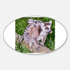 RING TAILED LEMUR MOTHER AND BABIES Decal