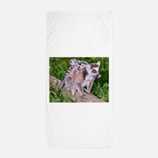 RING TAILED LEMUR MOTHER AND BABIES Beach Towel