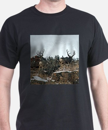 Wood wall bucks 15 T-Shirt