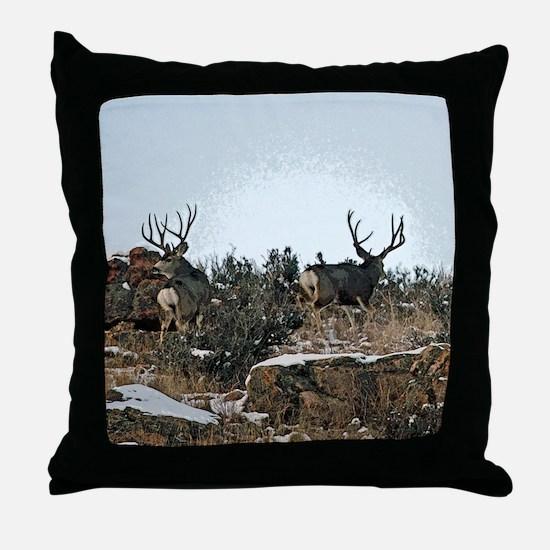 Wood wall bucks 15 Throw Pillow