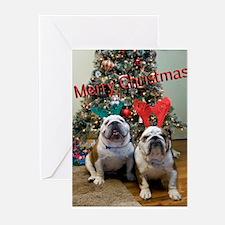 Unique Bulldog christmas Greeting Cards (Pk of 20)