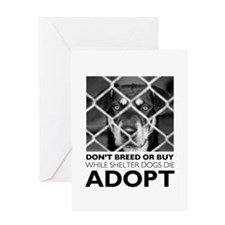 Shelter Dog Greeting Cards
