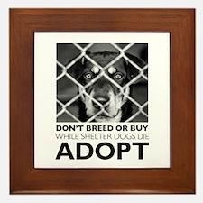 Shelter Dog Framed Tile
