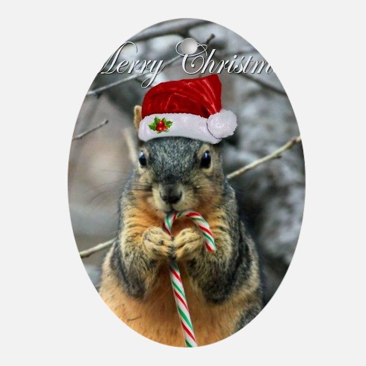 Cute Squirrel Oval Ornament