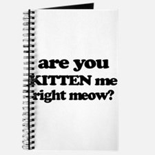 Are You Kitten Me Right Meow Journal