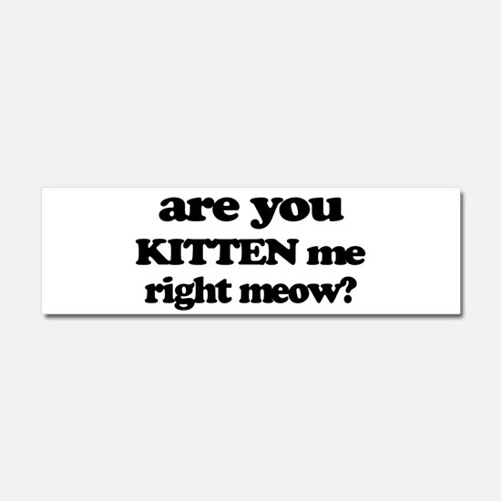 Are You Kitten Me Right Meow Car Magnet 10 x 3