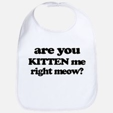 Are You Kitten Me Right Meow Bib