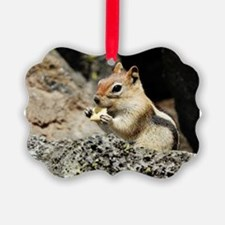 """The GREETER"" Ornament"