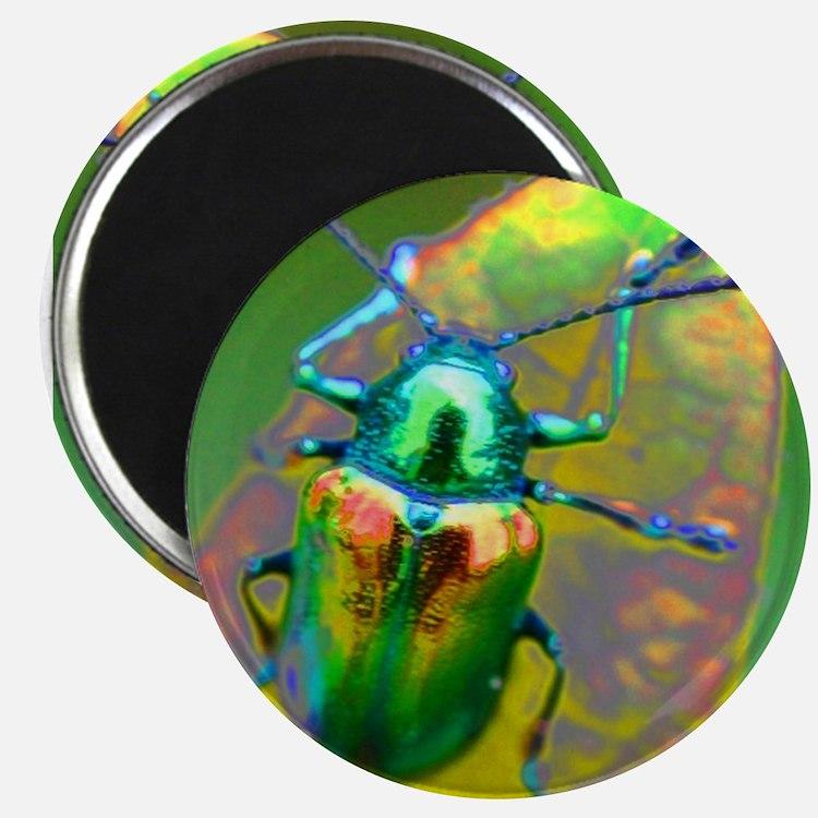 Cute Vw beetle art Magnet
