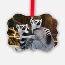 Cute Black white photography Ornament