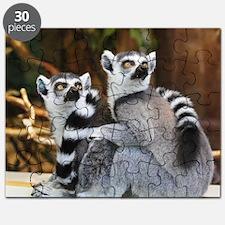 Cute Lemur Puzzle