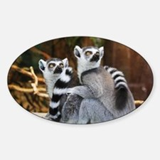 Lemurs Rock Decal