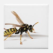 Umbrella Wasp Tile Coaster