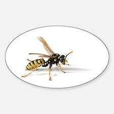 Umbrella Wasp Oval Decal