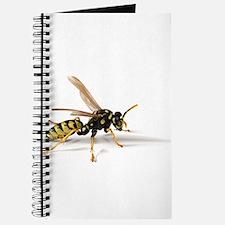 Umbrella Wasp Journal