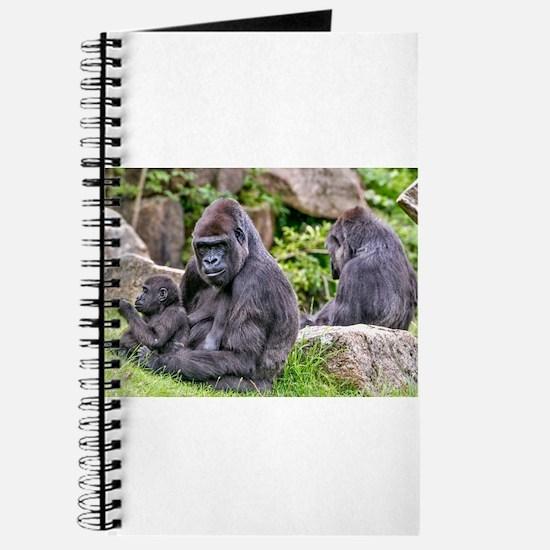 Unique Gorilla funny Journal