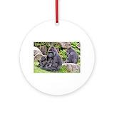 Gorilla Seasonal