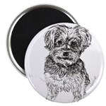 """Yorkshire Terrier"" by M. Nicole van Dam Magnet"