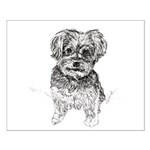 """Yorkshire Terrier"" by M. Nicole van Small Poster"