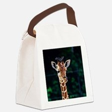 Cute Wildlife Canvas Lunch Bag