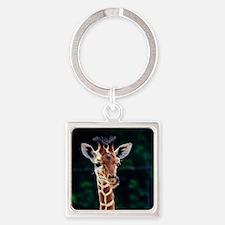 Cute Wildlife Square Keychain