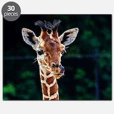 Cute Giraffe Puzzle