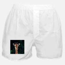 Sweet young Giraffe Boxer Shorts