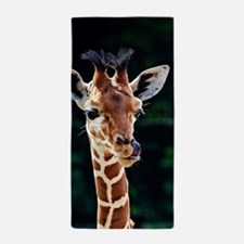 Sweet young Giraffe Beach Towel