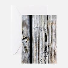 Cute Termite Greeting Card