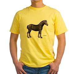 Percheron Horse T