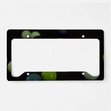 Unique Marbles License Plate Holder
