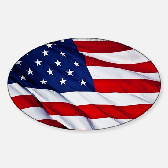 United States Flag in All Her Glory Decal