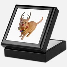 Reindeer Cat Keepsake Box