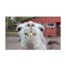 Cute Llama Rectangle Car Magnet