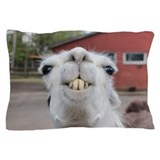Llama Pillow Cases