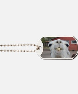 Cute Wild and crazy Dog Tags