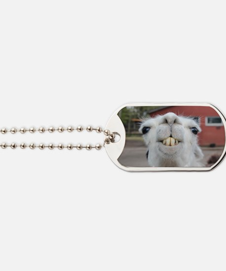 Cute Llama Dog Tags