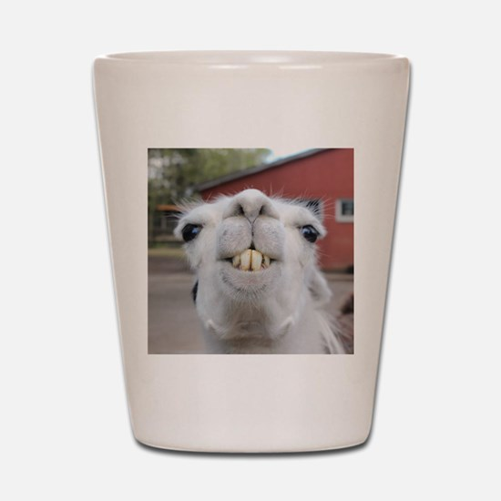 Funny Alpaca Llama Shot Glass