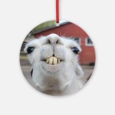 Funny Alpaca Llama Round Ornament