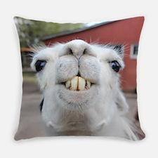 Funny Alpaca Llama Everyday Pillow