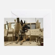 Obey the Belgian Malinois! Greeting Card