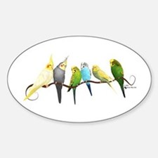 Parakeets & Cockatiels Decal
