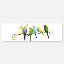 Parakeets & Cockatiels Bumper Bumper Bumper Sticker