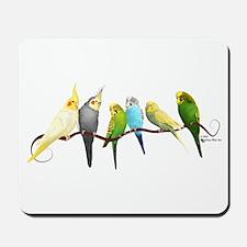 Parakeets & Cockatiels Mousepad