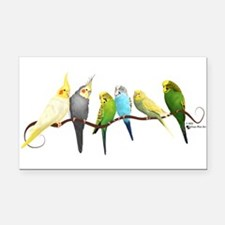 Parakeets & Cockatiels Rectangle Car Magnet