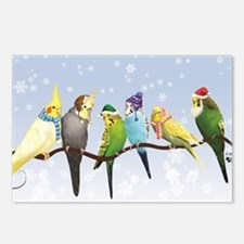 Winter Parakeets & Cockat Postcards (Package of 8)