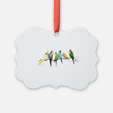 Unique Parrots Ornament