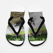 2006 Pontiac Solstice Flip Flops