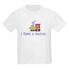 big brother again train T-Shirt